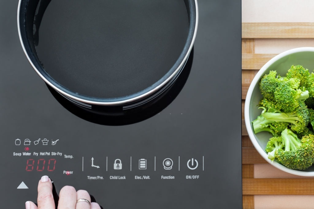 Best Portable Induction Cooktops
